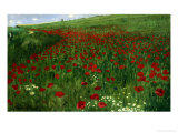 The Poppy Field  1896
