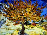 Mûrier à Saint-Rémy, 1889 Giclée par Vincent Van Gogh