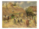 The Harvest  1883