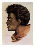 """Natai  a Maori Chief from Bream Bay  New Zealand  Plate 63 from """"Voyage of the Astrolabe"""""""