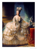 Marie Antoinette (1755-93) Queen of France  1779