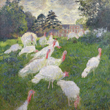 The Turkeys at the Chateau De Rottembourg  Montgeron  1877