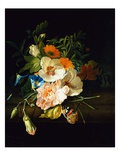 A Carnation  Morning Glory and Other Flowers by Rachel Ruysch