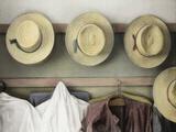 Amish Study No18