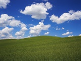 Field of Green under Scattered Clouds