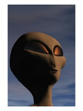 Face of an Extraterrestrial Alien
