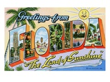 "Greetings from Florida  ""The Land of Sunshine"""