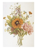 Illustration Depicting a Bouquet of Poppies  Carnations and Foxglove