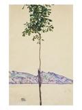 Petit arbre (châtaignier au lac Constance) Giclée par Egon Schiele
