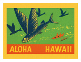 Flying Fish  Aloha Hawaii  c1940
