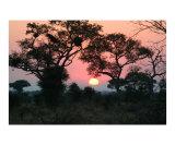 Sunrise over Kurger