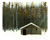 Newfoundland Hunting Camp
