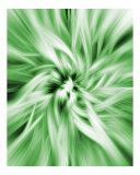 Abstract Digital Art  18
