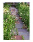garden path  long beach island  nj
