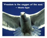 Freedom Photo-Poster 201Wa