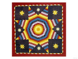 A Pieced and Appliqued Cotton Quilted Coverlet  Pennsylvania  19th Century