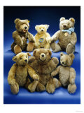 A Collection of Steiff Teddy Bears