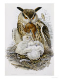 The Birds of Europe  Published 1832-1837