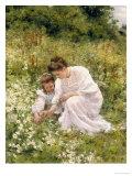 Picking Daisies  1905