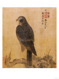 Falcon on a Pine Limb  Emperor Xuande  circa 1426-1435