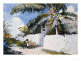 A Garden in Nassau  1885
