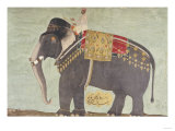 "Portrait of the Elephant ""Alam-Guman Gajraj""  circa 1650"