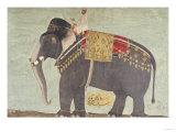 "Portrait of the Elephant ""Alam-Guman Gajraj""  circa 1650"