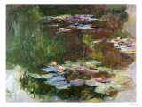 Lily Pond  1881