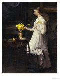 Arranging Daffodils