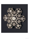 A Diamond and Platinum-Mounted Snowflake Brooch  circa 1908-1913