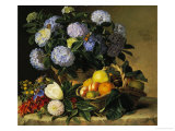 Hydrangea in an Urn and a Basket of Fruit on a Ledge