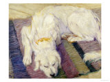A Dog Lying Down  1909