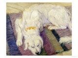 A Dog Lying Down  1909