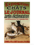 Exposition de Chats  1900