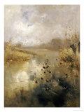 Ducks on a Lake  1896