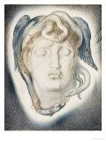 The Head of Medusa  1884