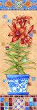 Flower in Greece II