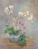 Orchid Heirloom I