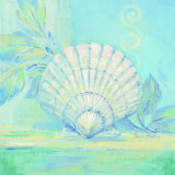 Tranquil Seashells IV