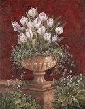 Alexa's Tulips