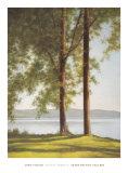 Sunlit Trees II