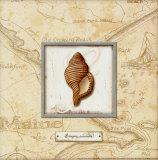 Sea Treasure IV