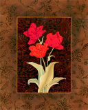 Damask Tulip