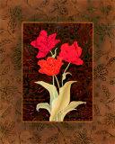 Damask Tulip