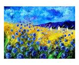 Blue cornflowers 68