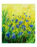 Wild bluebells flowers