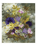 Morning Glory - Pressed Flower Art - Floral Arrangement