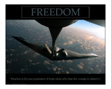 Freedom - B2 Bomber