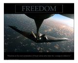 Freedom - B2 Bomber