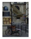 Still Life in Paris